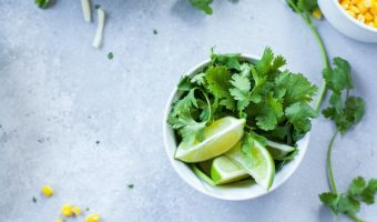 How to Keep Cilantro Fresh The Ultimate Guide