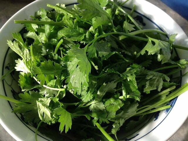 Always rinse cilantro with cool water