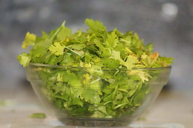 Removing yellowing and brown cilantro leaves prevents rot