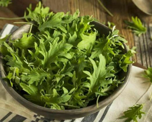 types of Kale: Baby Kale